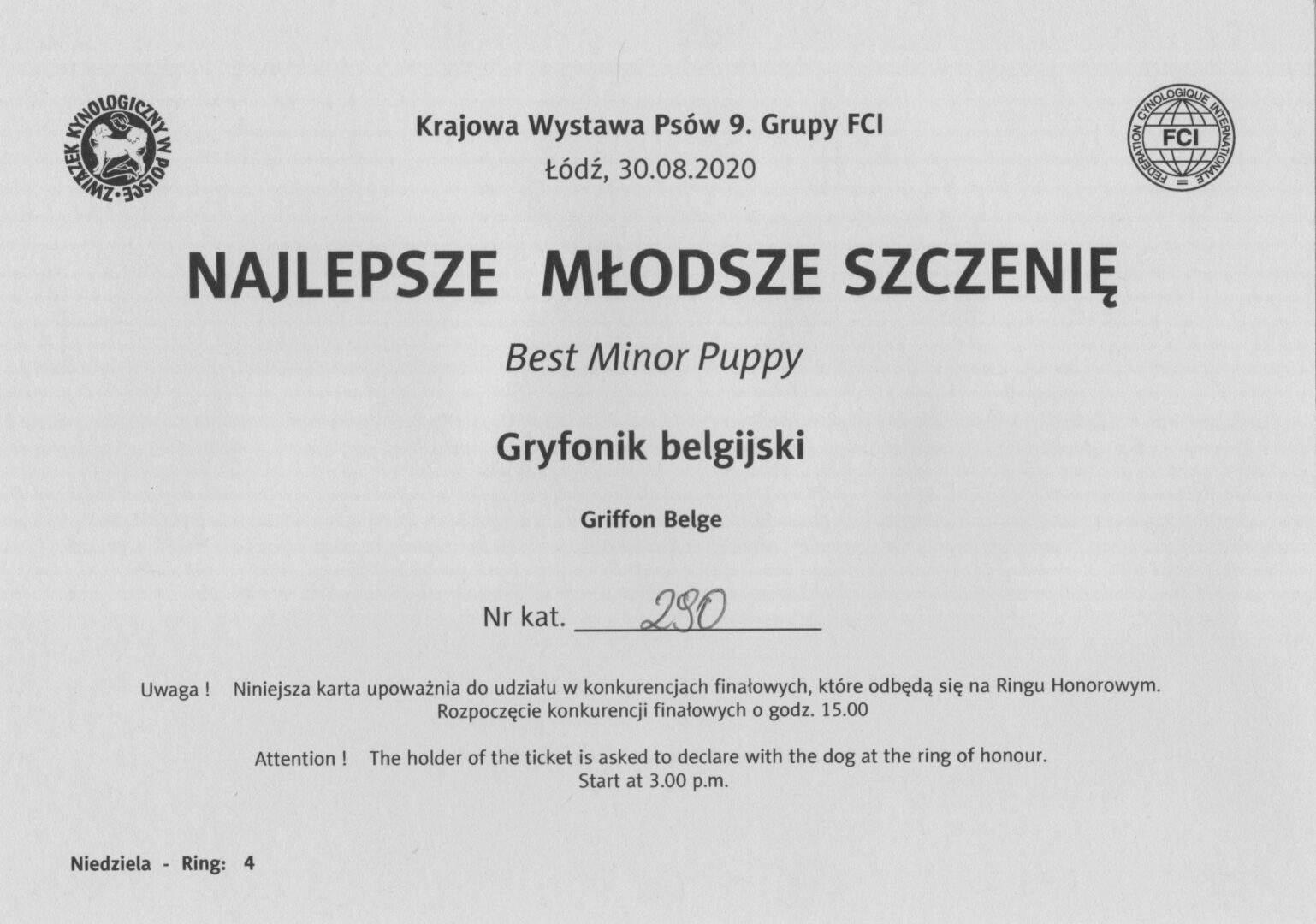 Bazyl - Gryfonik belgijski